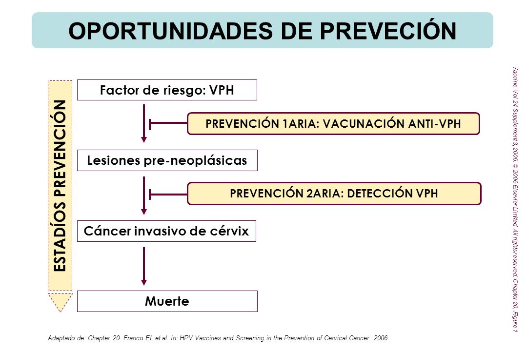 Adaptado de: Chapter 20. Franco EL et al. In: HPV Vaccines and Screening in the Prevention of Cervical Cancer. 2006 Factor de riesgo: VPH Lesiones pre