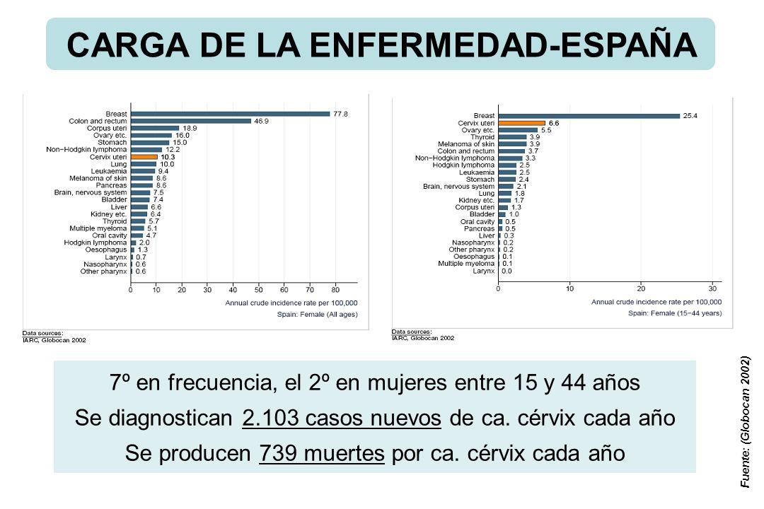 Fuente: (Globocan 2002) 7º en frecuencia, el 2º en mujeres entre 15 y 44 años Se diagnostican 2.103 casos nuevos de ca. cérvix cada año Se producen 73