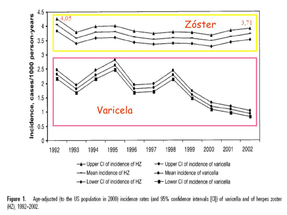 Varicela Zóster 4,05 3,71