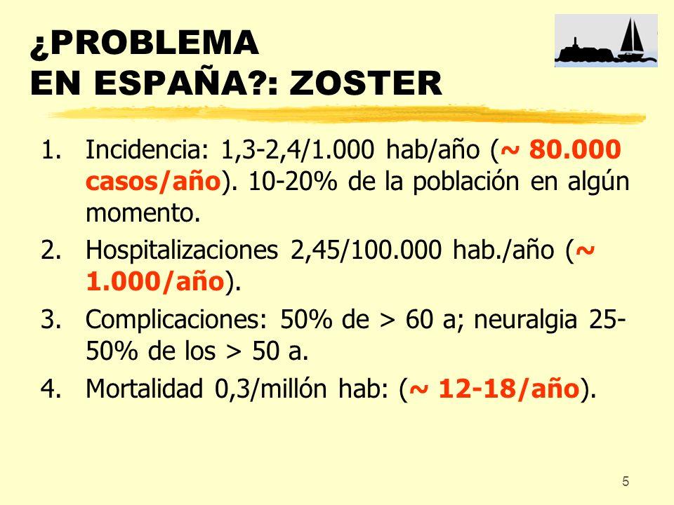 5 ¿PROBLEMA EN ESPAÑA?: ZOSTER 1.Incidencia: 1,3-2,4/1.000 hab/año (~ 80.000 casos/año). 10-20% de la población en algún momento. 2.Hospitalizaciones