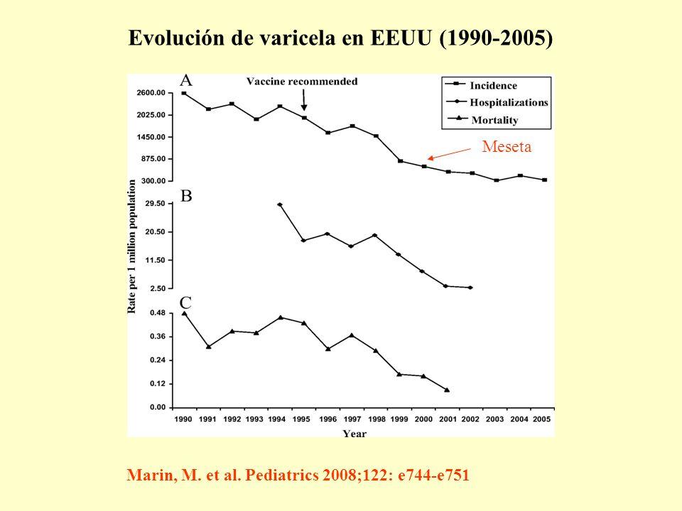 Marin, M. et al. Pediatrics 2008;122: e744-e751 Evolución de varicela en EEUU (1990-2005) Meseta
