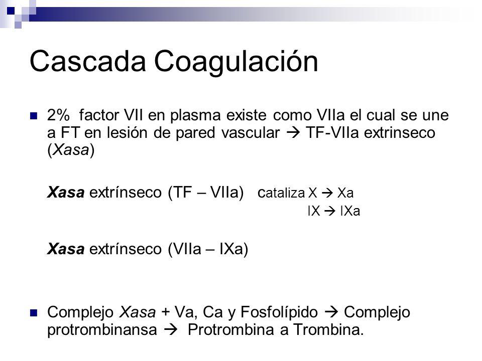 Cascada Coagulación 2% factor VII en plasma existe como VIIa el cual se une a FT en lesión de pared vascular TF-VIIa extrinseco (Xasa) Xasa extrínseco