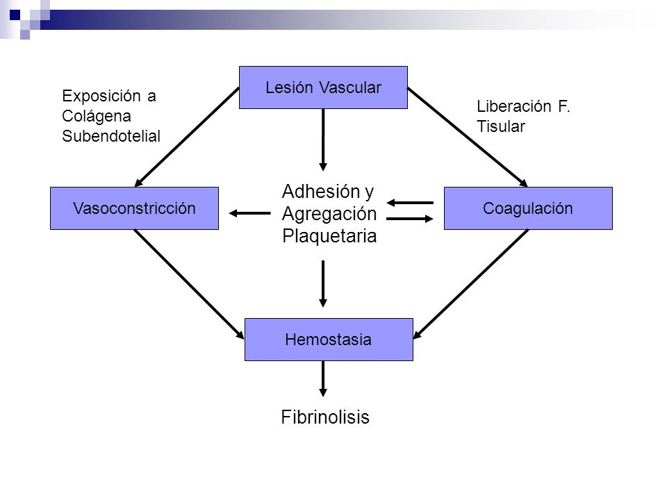 Alteraciones Hemostáticas Hereditarias Deficiencia de Fact.