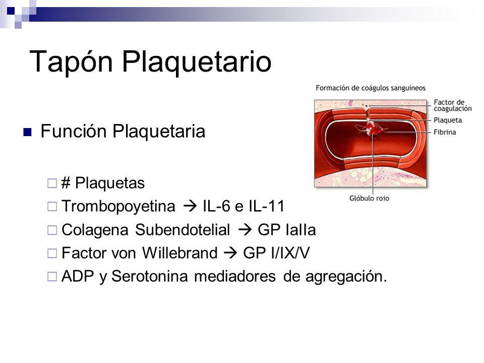 Tapón Plaquetario Función Plaquetaria # Plaquetas Trombopoyetina IL-6 e IL-11 Colagena Subendotelial GP IaIIa Factor von Willebrand GP I/IX/V ADP y Se