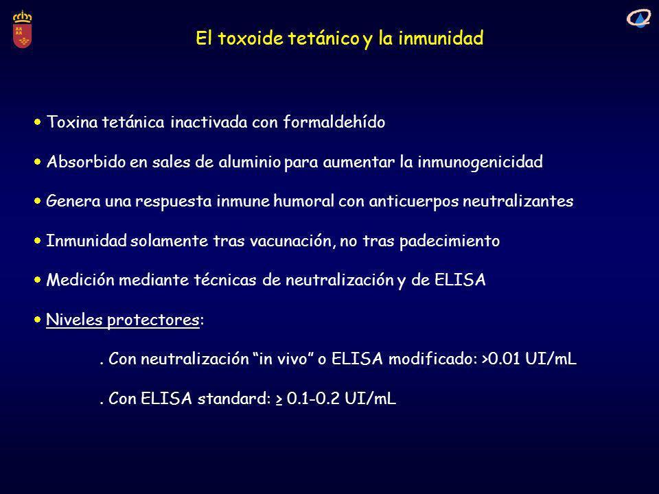 El toxoide tetánico y la inmunidad Toxina tetánica inactivada con formaldehído Absorbido en sales de aluminio para aumentar la inmunogenicidad Genera