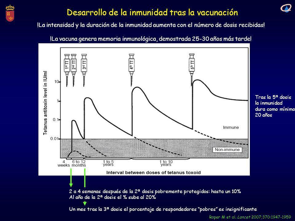 Desarrollo de la inmunidad tras la vacunación Roper M et al. Lancet 2007;370:1947-1959 2 a 4 semanas después de la 2ª dosis pobremente protegidos: has