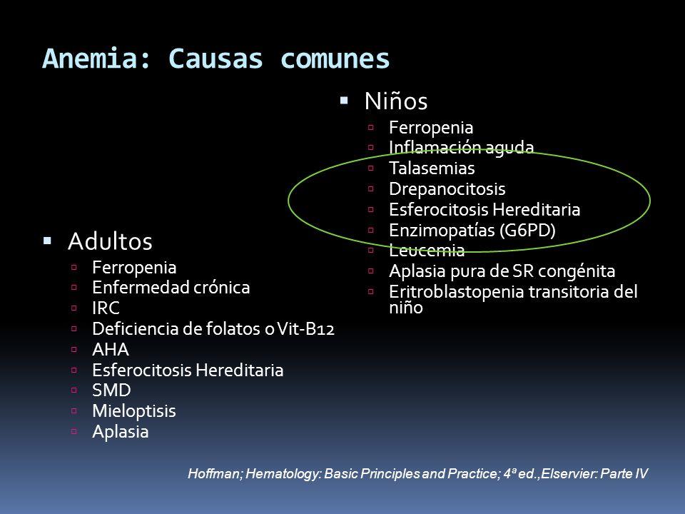 Anemia: Causas comunes Adultos Ferropenia Enfermedad crónica IRC Deficiencia de folatos o Vit-B12 AHA Esferocitosis Hereditaria SMD Mieloptisis Aplasi