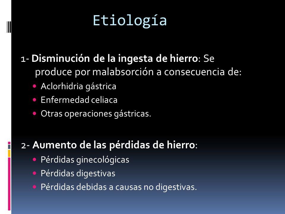 Etiología 1- Disminución de la ingesta de hierro: Se produce por malabsorción a consecuencia de: Aclorhidria gástrica Enfermedad celiaca Otras operaci