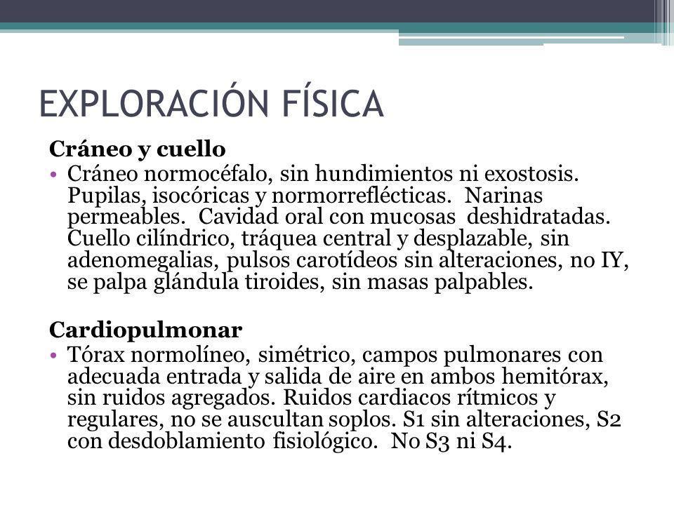 Cráneo y cuello Cráneo normocéfalo, sin hundimientos ni exostosis. Pupilas, isocóricas y normorreflécticas. Narinas permeables. Cavidad oral con mucos
