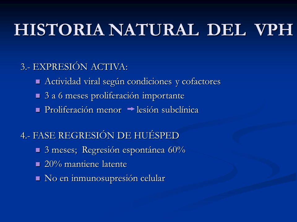 HISTORIA NATURAL DEL VPH 3.- EXPRESIÓN ACTIVA: Actividad viral según condiciones y cofactores Actividad viral según condiciones y cofactores 3 a 6 mes