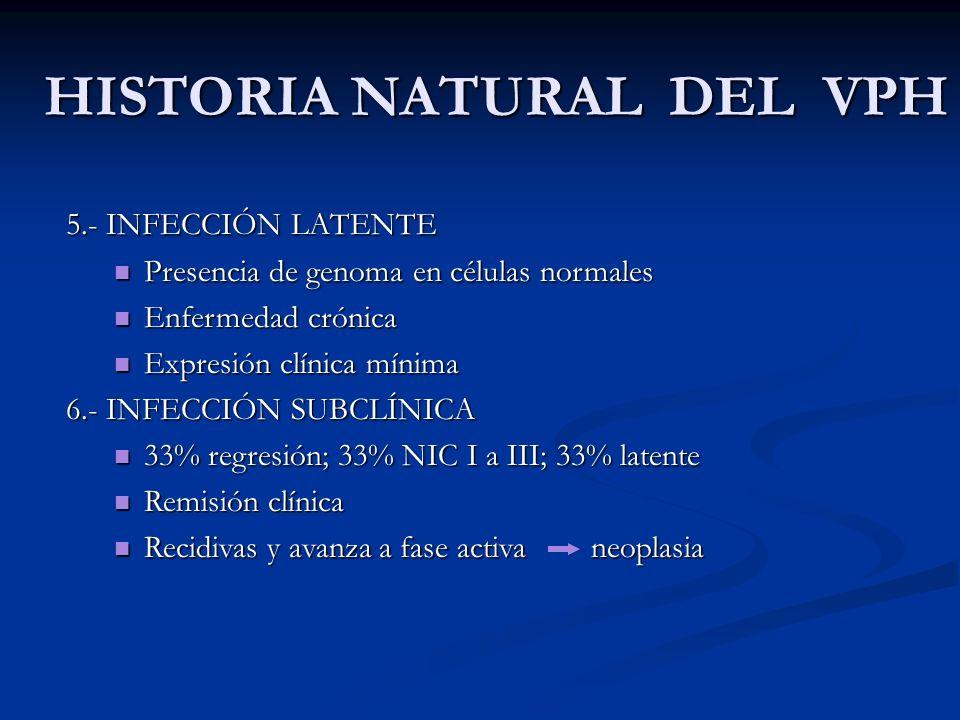 HISTORIA NATURAL DEL VPH 5.- INFECCIÓN LATENTE Presencia de genoma en células normales Presencia de genoma en células normales Enfermedad crónica Enfe