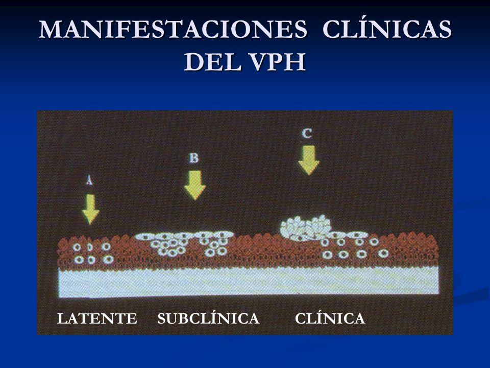 Colposcopia Colposcopia Extensión Extensión Exocérvix Exocérvix 2 a 4 mm promedio 2 a 4 mm promedio Alcanza hasta 7 mm extensión Alcanza hasta 7 mm extensión Mono o multicéntrico Mono o multicéntrico Endocérvix Endocérvix VI.- DIAGNÓSTICO DE NIC I