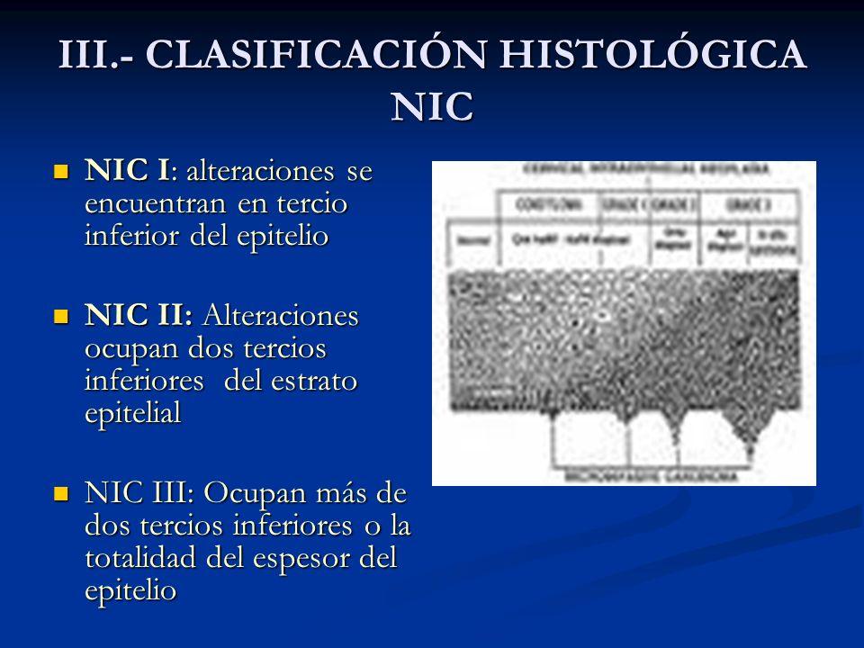 NEOPLASIA INTRAEPITELIAL CERVICAL (NIC I) Histología Histología Epitelio con arquitectura similar a la normal Epitelio con arquitectura similar a la normal Hipercromasia (alteraciones de la maduración del núcleo) Hipercromasia (alteraciones de la maduración del núcleo) Discariosis (moderadas modificaciones en la membrana celular) Discariosis (moderadas modificaciones en la membrana celular) Distribución anormal de la cromatina (grumos) Distribución anormal de la cromatina (grumos)