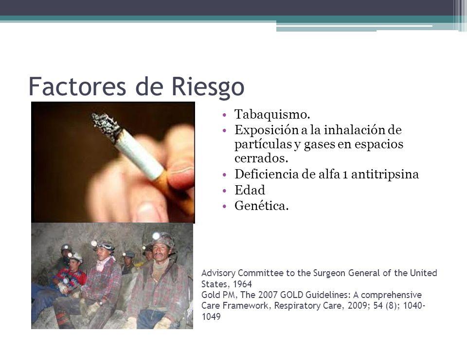 Factores de Riesgo Tabaquismo. Exposición a la inhalación de partículas y gases en espacios cerrados. Deficiencia de alfa 1 antitripsina Edad Genética