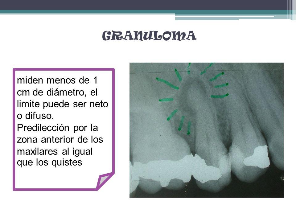 GRANULOMA miden menos de 1 cm de diámetro, el limite puede ser neto o difuso. Predilección por la zona anterior de los maxilares al igual que los quis