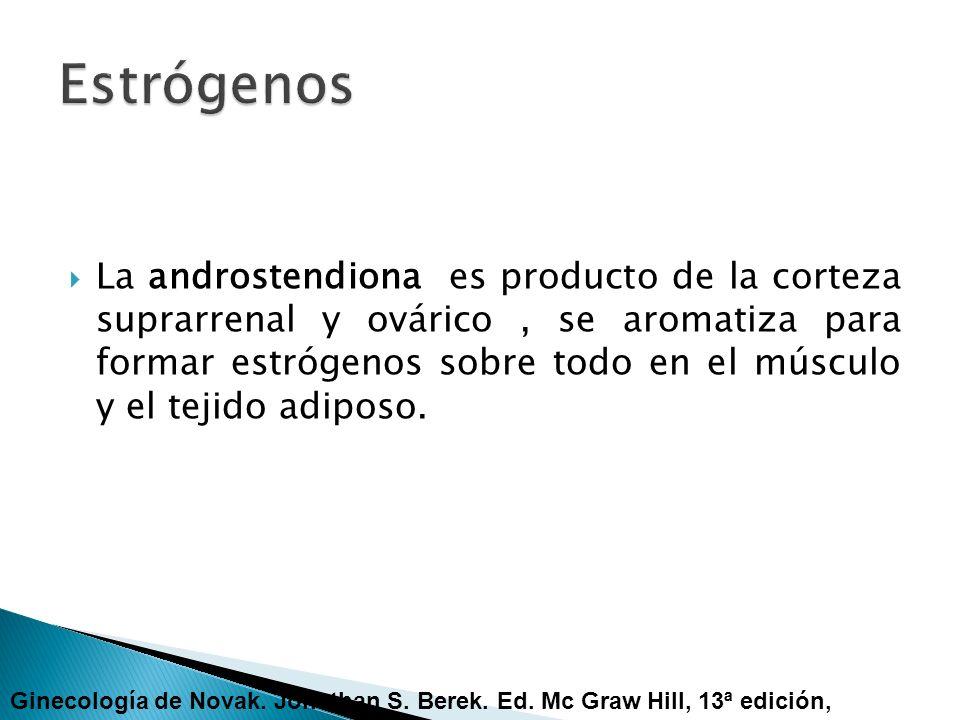 La androstendiona es producto de la corteza suprarrenal y ovárico, se aromatiza para formar estrógenos sobre todo en el músculo y el tejido adiposo. G