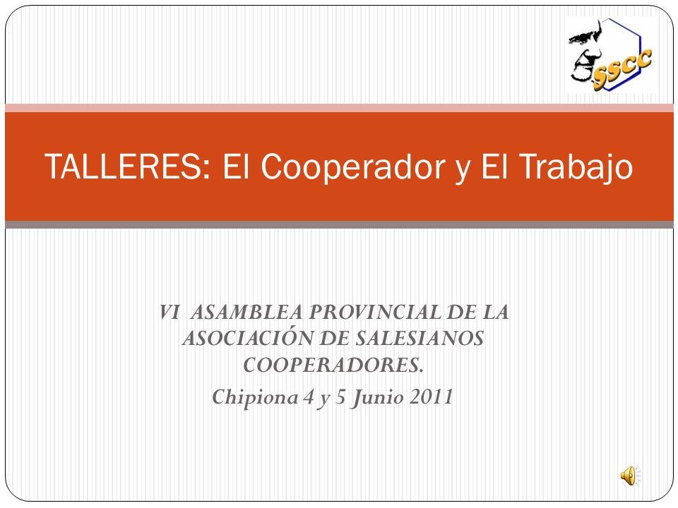 VI ASAMBLEA PROVINCIAL DE LA ASOCIACIÓN DE SALESIANOS COOPERADORES.