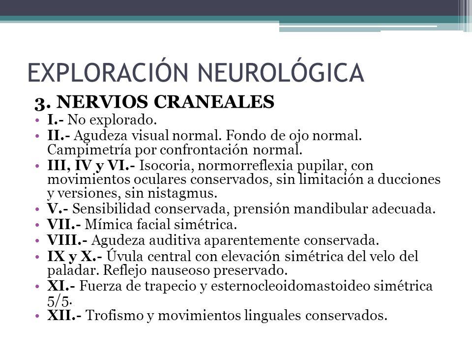 3. NERVIOS CRANEALES I.- No explorado. II.- Agudeza visual normal. Fondo de ojo normal. Campimetría por confrontación normal. III, IV y VI.- Isocoria,