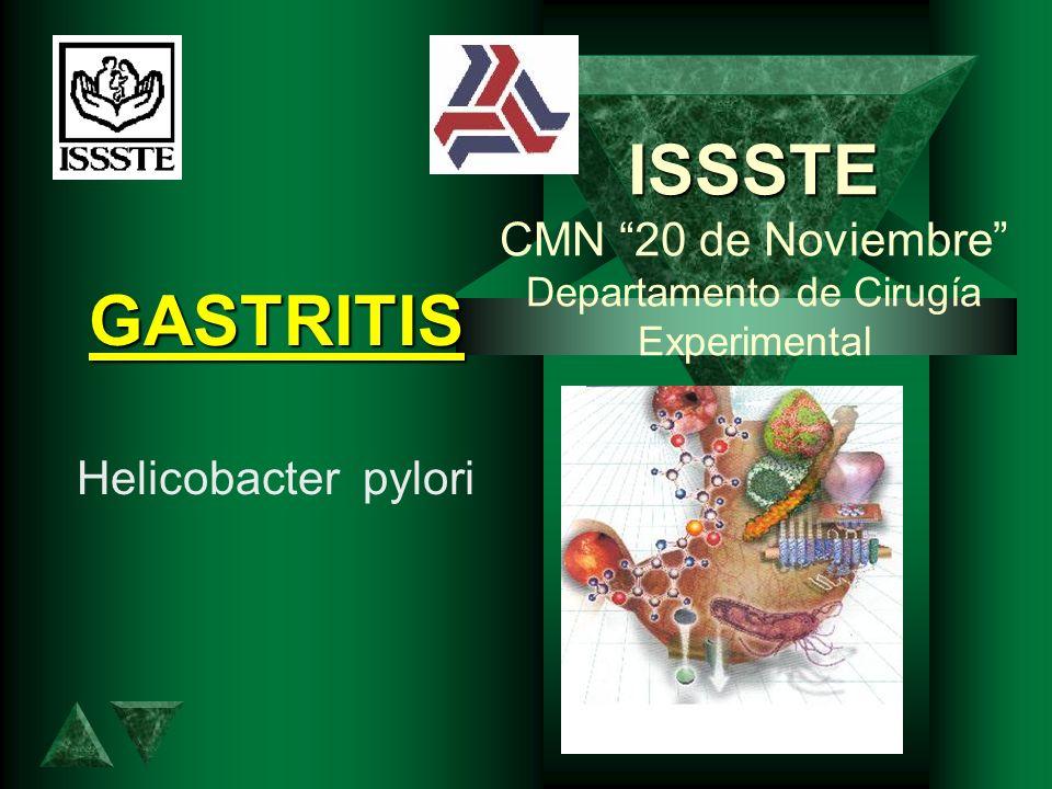 ISSSTE ISSSTE CMN 20 de Noviembre Departamento de Cirugía Experimental GASTRITIS Helicobacter pylori