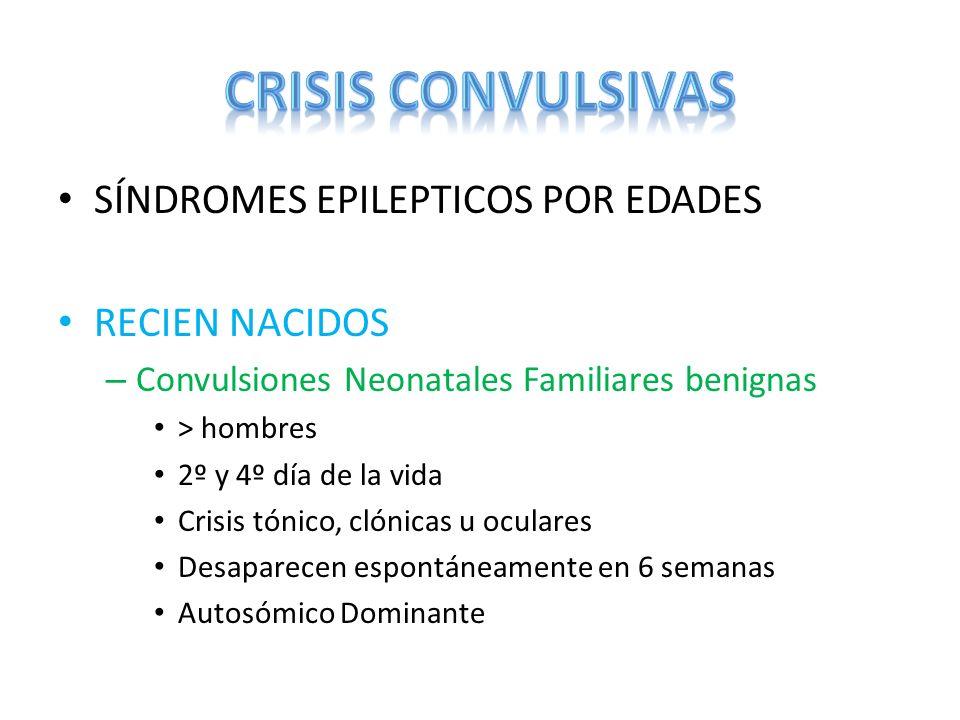 SÍNDROMES EPILEPTICOS POR EDADES RECIEN NACIDOS – Convulsiones Neonatales Familiares benignas > hombres 2º y 4º día de la vida Crisis tónico, clónicas