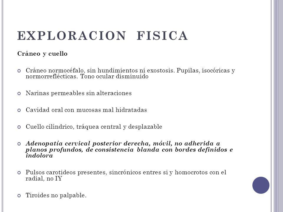 EXPLORACION FISICA Cráneo y cuello Cráneo normocéfalo, sin hundimientos ni exostosis. Pupilas, isocóricas y normorreflécticas. Tono ocular disminuido
