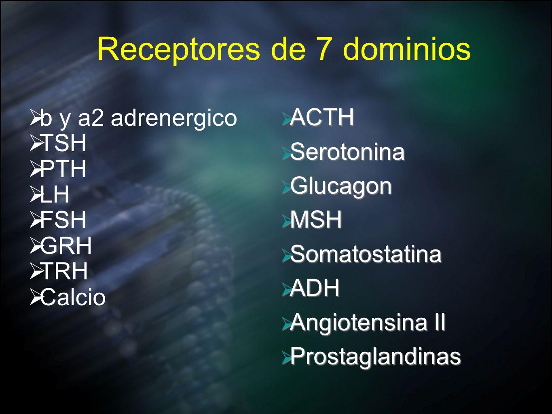 Receptores de 7 dominios b y a2 adrenergico TSH PTH LH FSH GRH TRH Calcio ACTH ACTH Serotonina Serotonina Glucagon Glucagon MSH MSH Somatostatina Soma