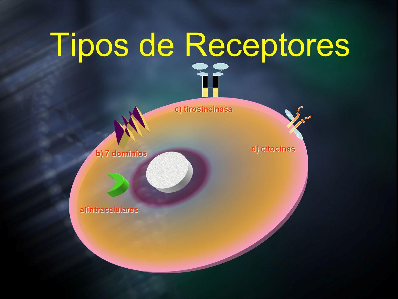 Tipos de Receptores a)intracelulares b) 7 dominios c) tirosincinasa JAK2 d) citocinas
