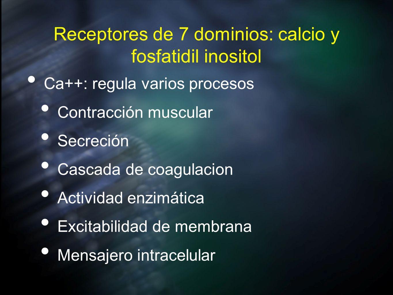 Receptores de 7 dominios: calcio y fosfatidil inositol Ca++: regula varios procesos Contracción muscular Secreción Cascada de coagulacion Actividad en