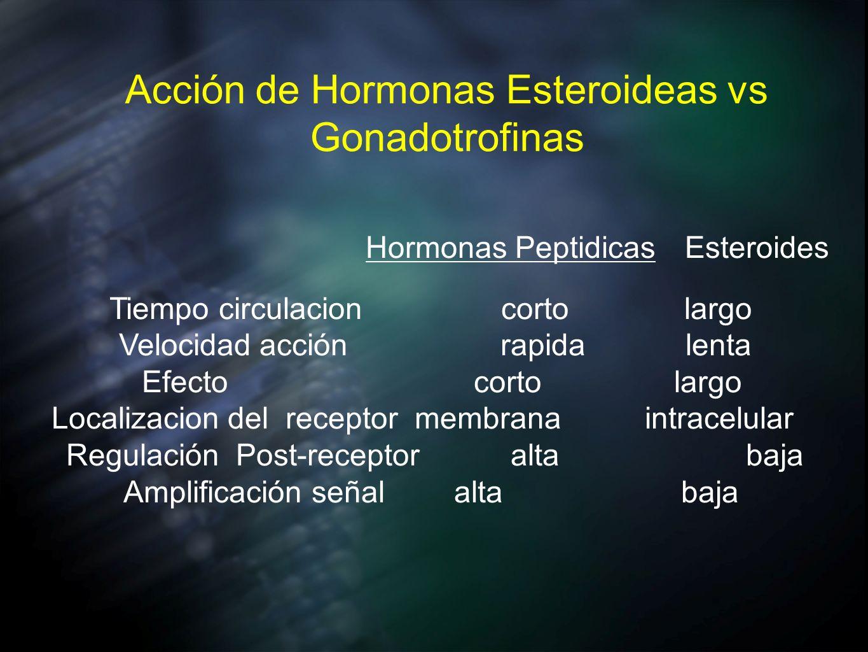 Acción de Hormonas Esteroideas vs Gonadotrofinas Hormonas Peptidicas Esteroides Tiempo circulacion corto largo Velocidad acción rapida lenta Efecto co