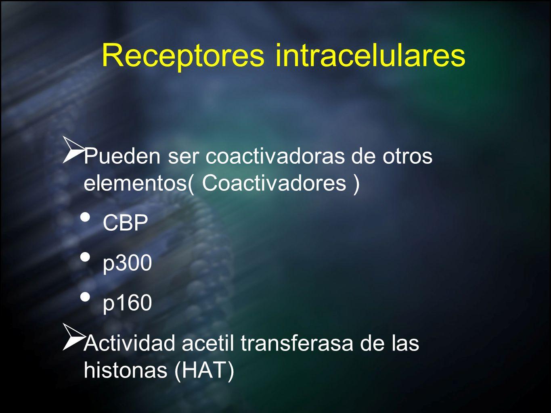 Receptores intracelulares Pueden ser coactivadoras de otros elementos( Coactivadores ) CBP p300 p160 Actividad acetil transferasa de las histonas (HAT