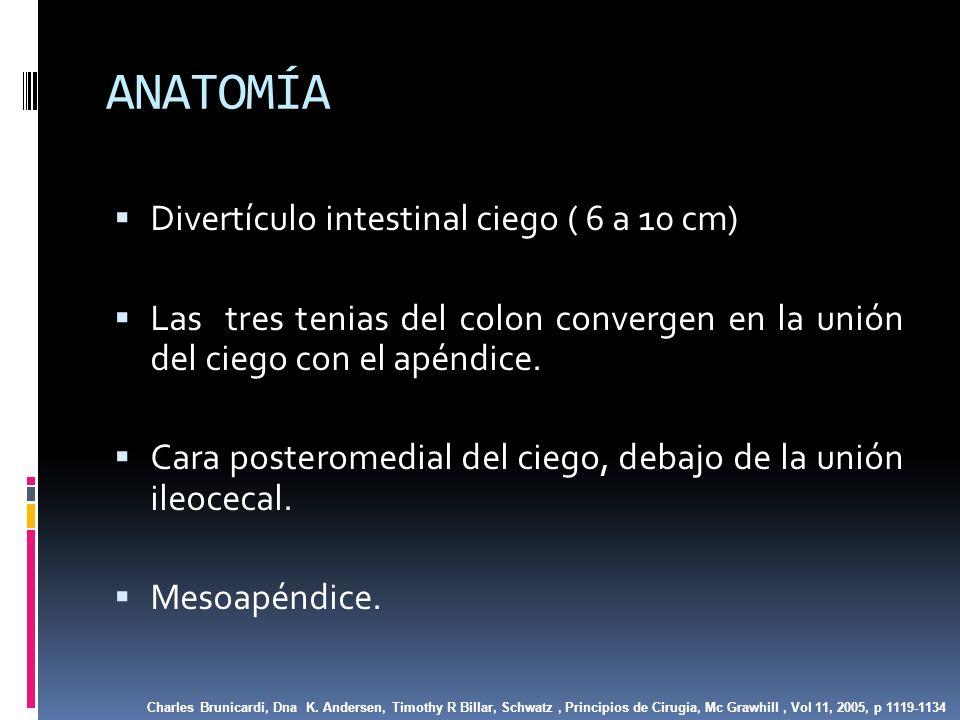 CLASIFICACIÓN Apendicitis Gangrenosa o Necrótica: Áreas verde grisaceas o rojo oscuro, microperforaciones líquido peritoneal tenuamente purulento, olor fecaloideo.