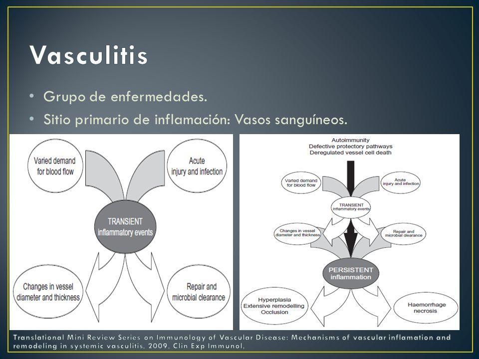 Clasificaciones: Vasculitis Primarias.Vasculitis Secundarias.