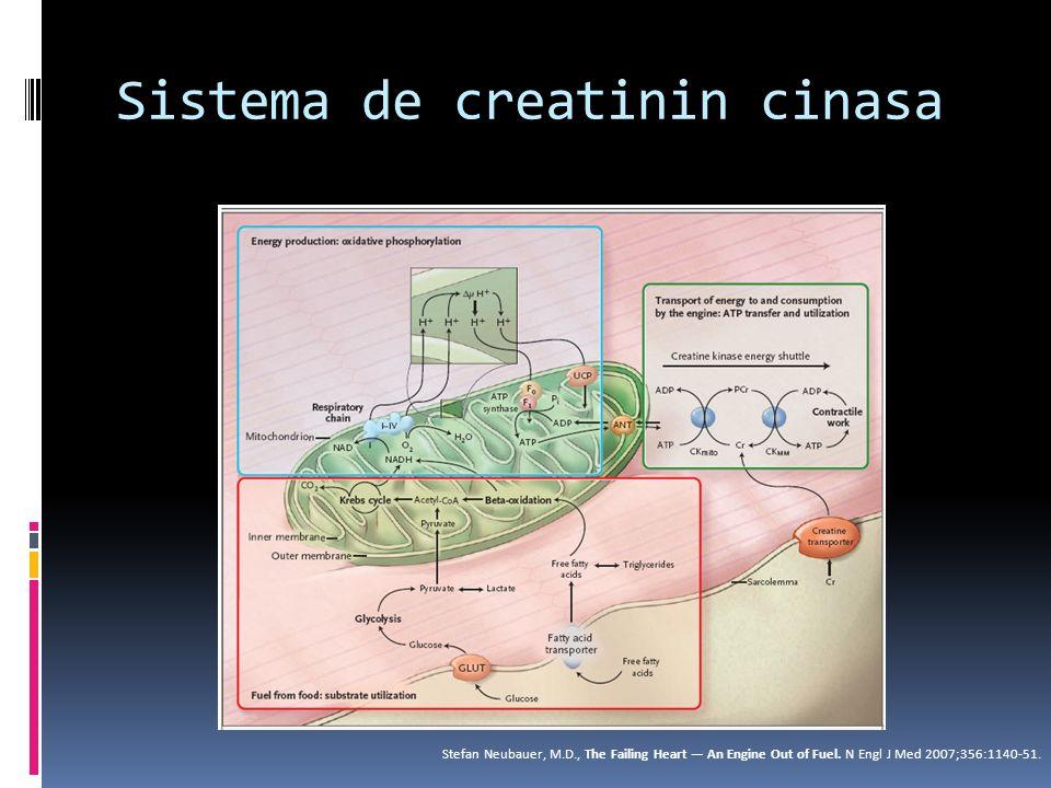 Clasificación pronóstica Cuauhtémoc Acoltzin, et al.
