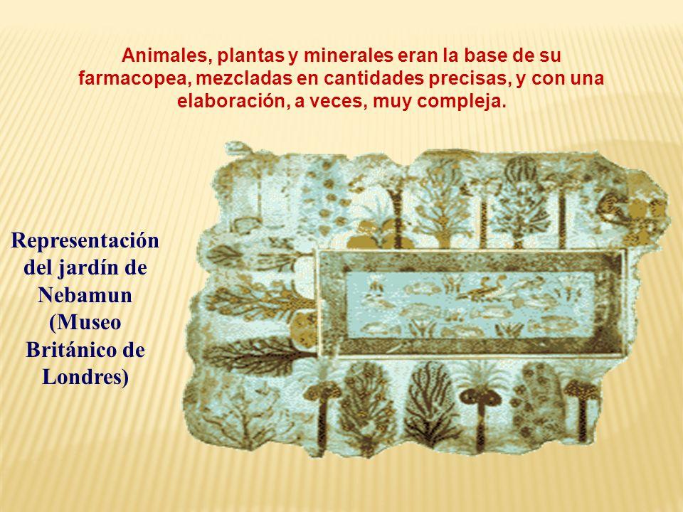 Animales, plantas y minerales eran la base de su farmacopea, mezcladas en cantidades precisas, y con una elaboración, a veces, muy compleja. Represent