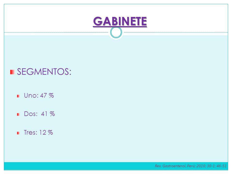 SEGMENTOS: Uno: 47 % Dos: 41 % Tres: 12 % GABINETE Rev. Gastroenterol. Perú; 2010; 30-1: 46-51