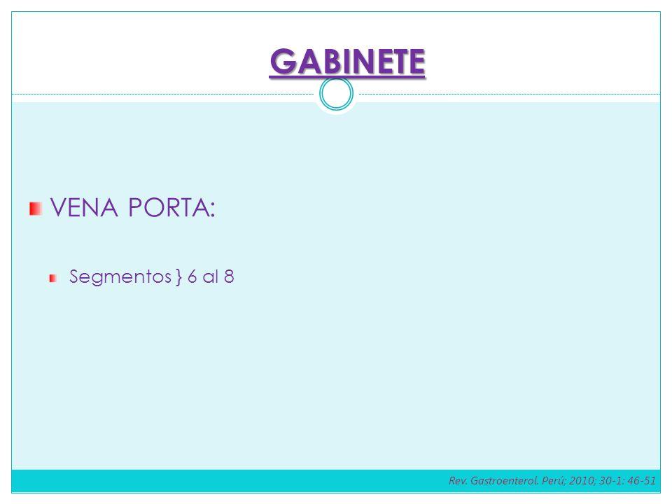 VENA PORTA: Segmentos } 6 al 8 GABINETE Rev. Gastroenterol. Perú; 2010; 30-1: 46-51