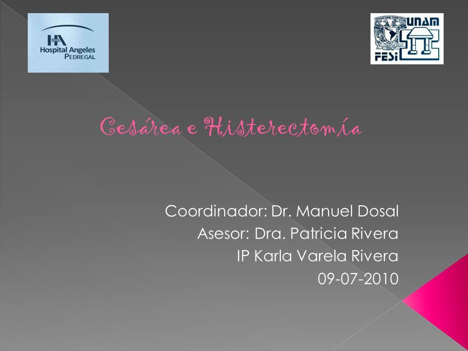 Coordinador: Dr. Manuel Dosal Asesor: Dra. Patricia Rivera IP Karla Varela Rivera 09-07-2010