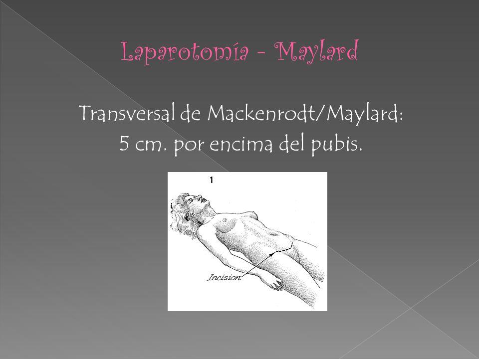Transversal de Mackenrodt/Maylard: 5 cm. por encima del pubis.