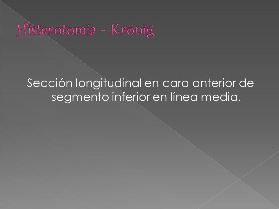 Sección longitudinal en cara anterior de segmento inferior en línea media.
