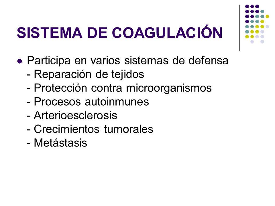 SISTEMA DE COAGULACIÓN Participa en varios sistemas de defensa - Reparación de tejidos - Protección contra microorganismos - Procesos autoinmunes - Ar