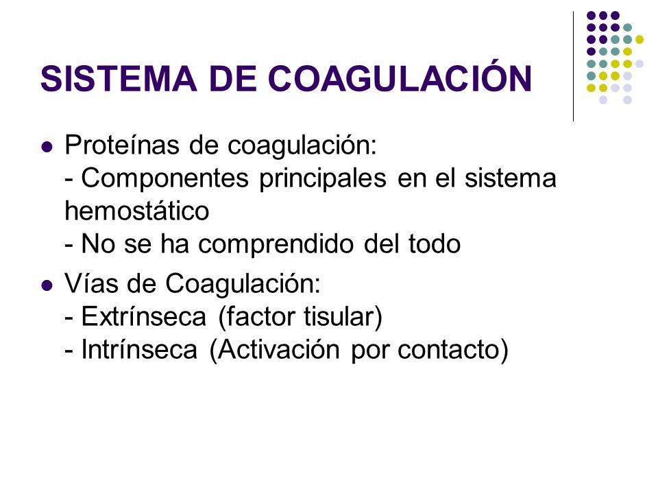 SISTEMA DE COAGULACIÓN Proteínas de coagulación: - Componentes principales en el sistema hemostático - No se ha comprendido del todo Vías de Coagulaci