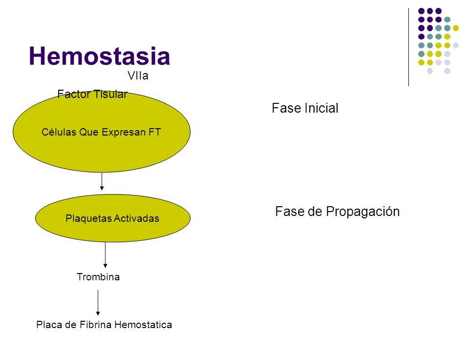 Hemostasia Células Que Expresan FT Factor Tisular VIIa Plaquetas Activadas Trombina Placa de Fibrina Hemostatica Fase Inicial Fase de Propagación