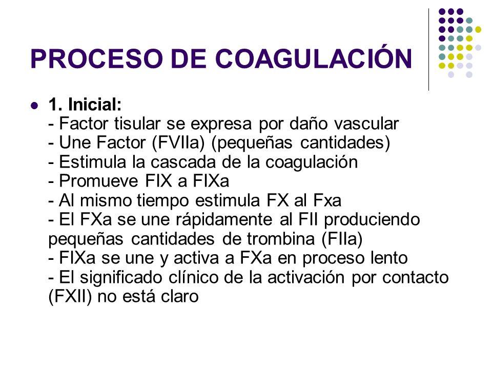 PROCESO DE COAGULACIÓN 1. Inicial: - Factor tisular se expresa por daño vascular - Une Factor (FVIIa) (pequeñas cantidades) - Estimula la cascada de l