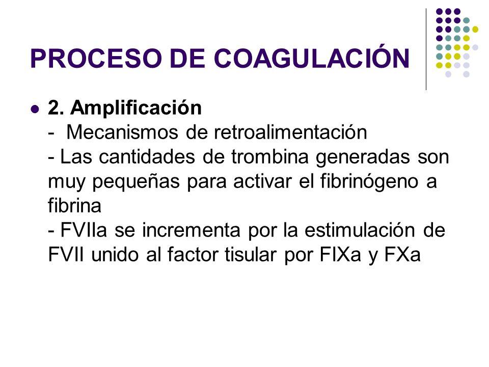 PROCESO DE COAGULACIÓN 2. Amplificación - Mecanismos de retroalimentación - Las cantidades de trombina generadas son muy pequeñas para activar el fibr
