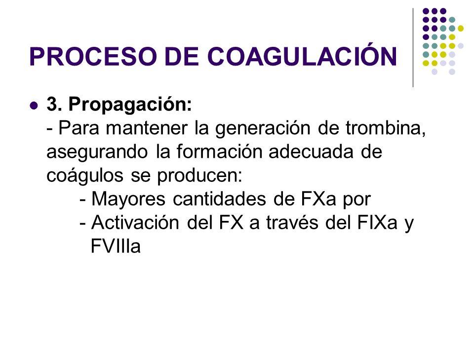 PROCESO DE COAGULACIÓN 3. Propagación: - Para mantener la generación de trombina, asegurando la formación adecuada de coágulos se producen: - Mayores