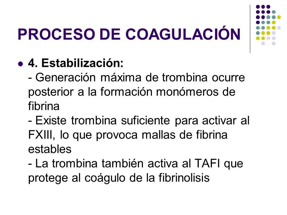 PROCESO DE COAGULACIÓN 4. Estabilización: - Generación máxima de trombina ocurre posterior a la formación monómeros de fibrina - Existe trombina sufic