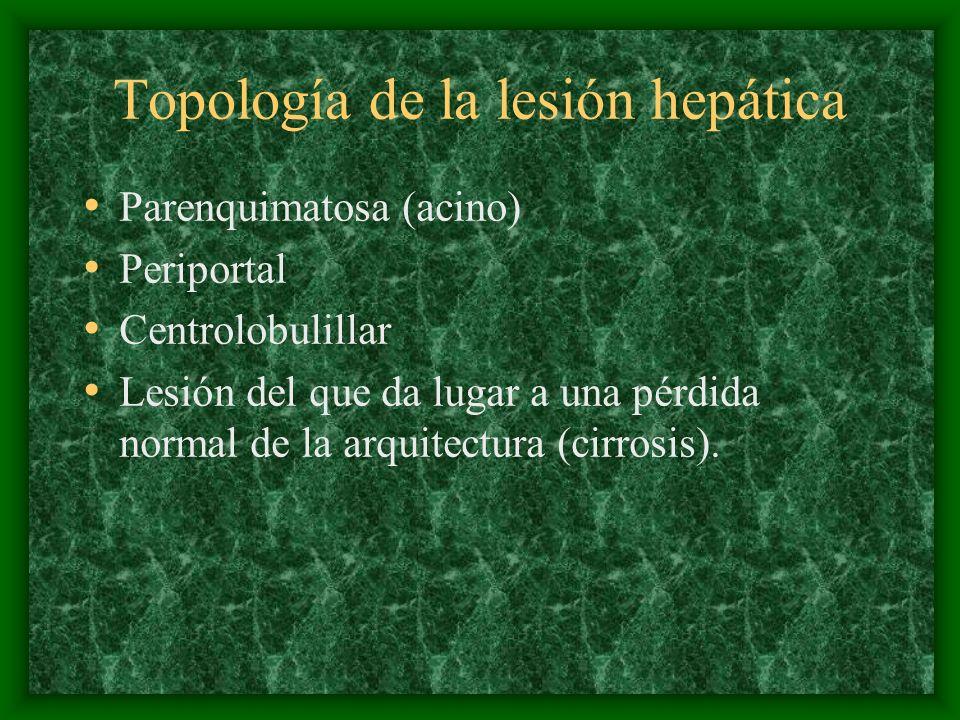 Topología de la lesión hepática Parenquimatosa (acino) Periportal Centrolobulillar Lesión del que da lugar a una pérdida normal de la arquitectura (ci