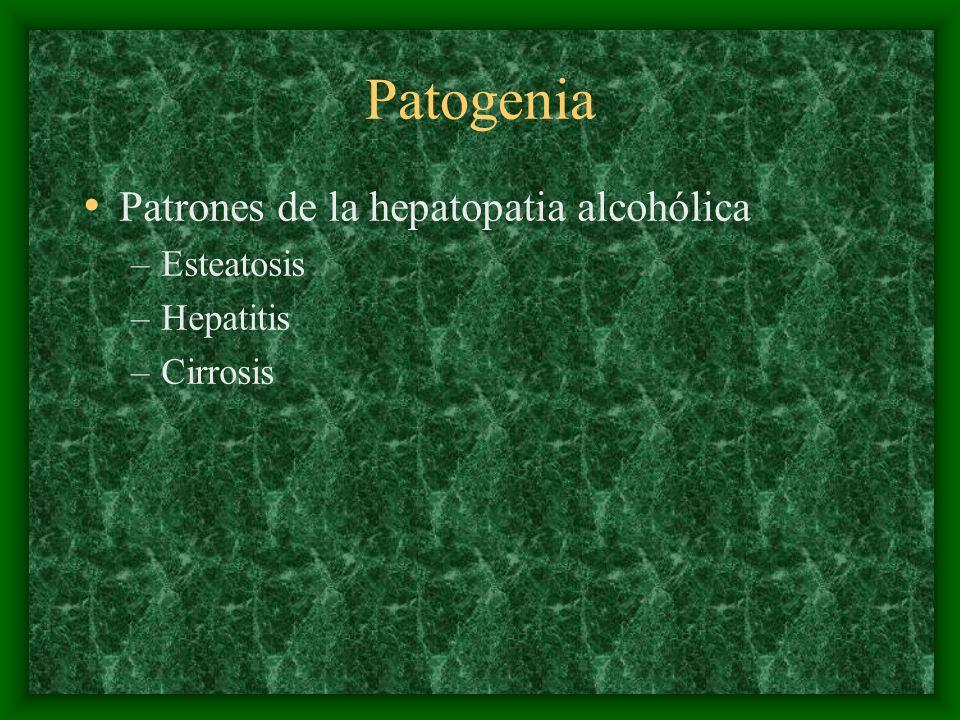Patogenia Patrones de la hepatopatia alcohólica –Esteatosis –Hepatitis –Cirrosis