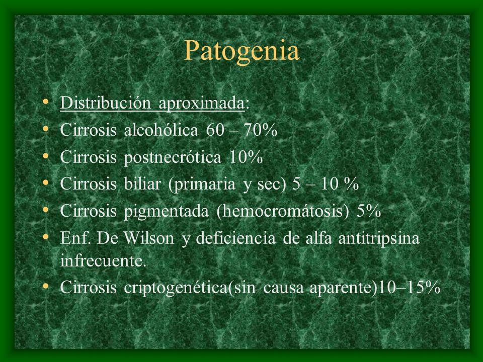 Patogenia Distribución aproximada: Cirrosis alcohólica 60 – 70% Cirrosis postnecrótica 10% Cirrosis biliar (primaria y sec) 5 – 10 % Cirrosis pigmenta