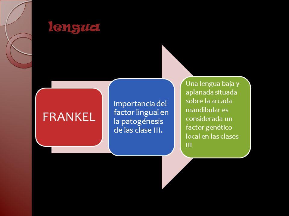 lengua FRANKEL importancia del factor lingual en la patogénesis de las clase III. Una lengua baja y aplanada situada sobre la arcada mandibular es con